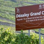 1900x500 Touristische Tafeln im Lavaux