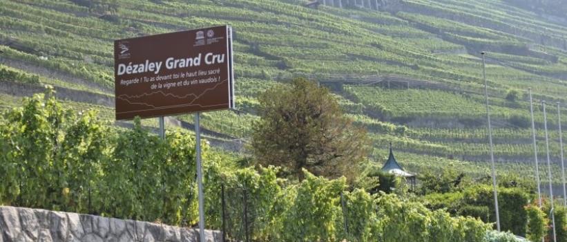 Neue Informationstafeln im Lavaux